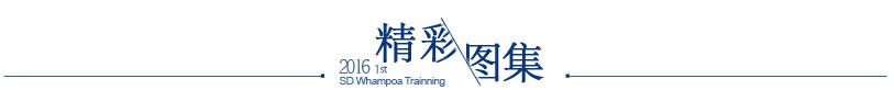 中国智装院黄埔班活动之精彩图集